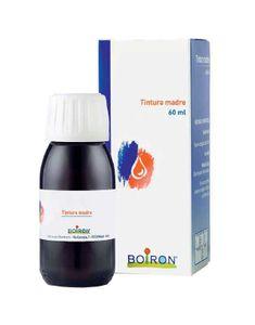 Boiron - Cynara Scolymus Tintura Madre Confezione 60 Ml