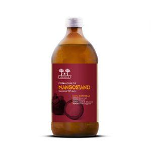 Salugea - Succo Di Mangostano Naturale Al 100% Confezione 500 Ml